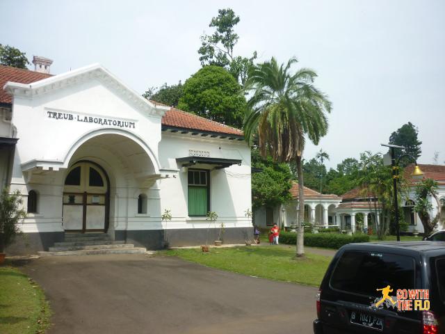 Bogor Botanic Gardens