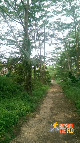 The path leading up to the Istana