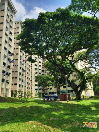 Kallang Riverside Park to Bishan-Ang Mo Kio Park