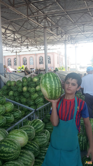 It is water melon season in Uzbekistan!