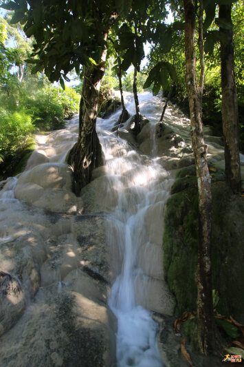 The unique Bua Tong Waterfalls