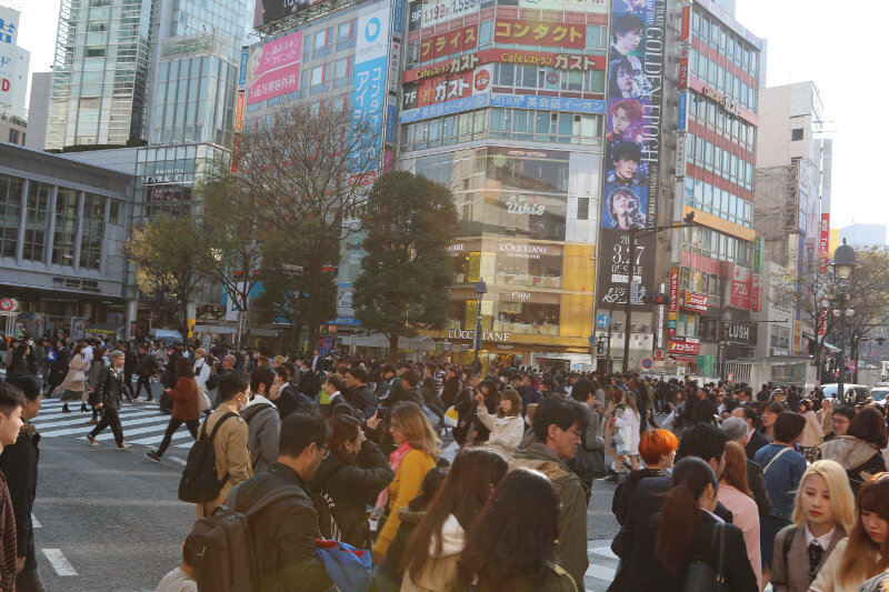 The always busy Shibuya Crossing