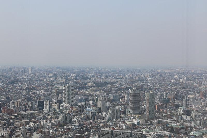 Views from Shinjuku Nomura Building