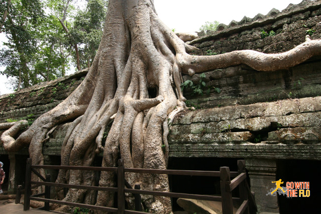 1507-Temples-of-Angkor_26